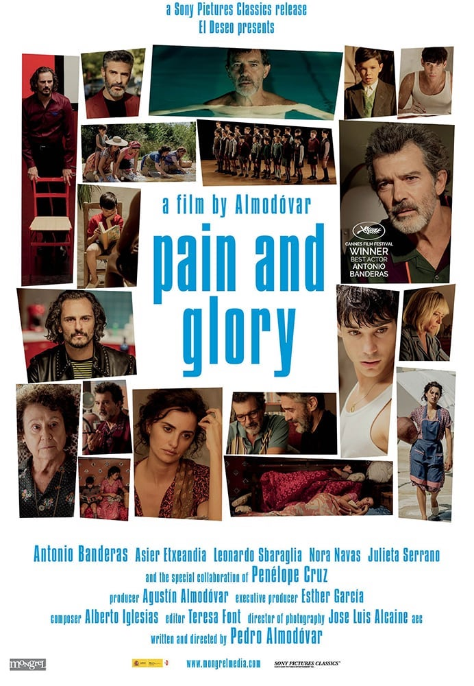 Movie poster for Pain and Glory